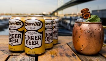 The Best Ginger Beers, or Summer Drinks Better than Ginger Ale